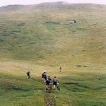 Il sentiero 105 EE esce dalla pineta