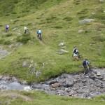 La strada degli Alpi