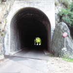 Salita verso Alpe Gesero