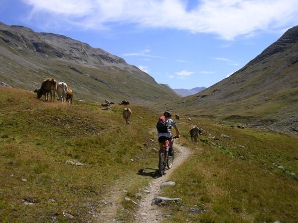 Alpe Stretta
